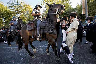 Haredim Police Horses 8-29-09