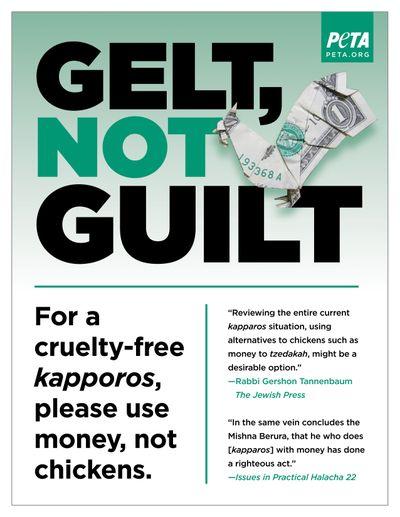 Gelt not guilt 2-300