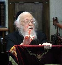 Rabbi elyashiv finger