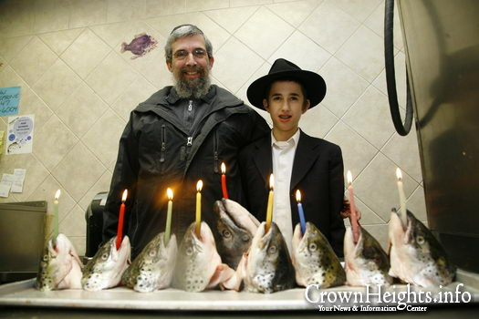 Fish Menorah 4