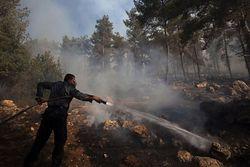 Firefighter Jerusalem Forest 7-25-10