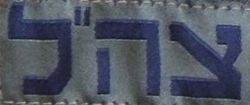 IDF Patch cropped