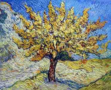 Van-Gogh --A-Mulberry-Tree