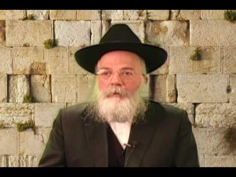 Rabbi Sholom DovBer Wolpo 2