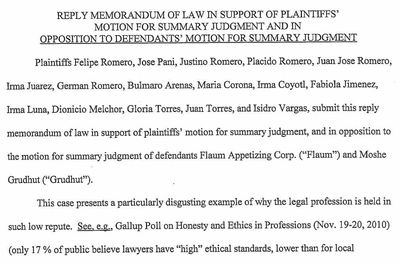 Plaintiffs v Flaum 1