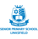 King David Schools logo Johannesberg