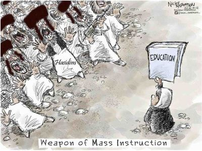 Altered Nick Anderson cartoon Hasidim Education