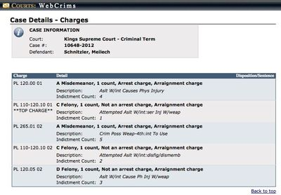 Meilech Schnitzler charge sheet (downloaded 8-22-2013)