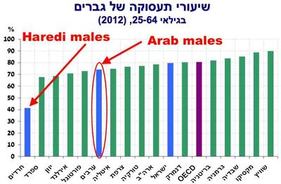 Bank of Israel employment slide haredim 10-2013