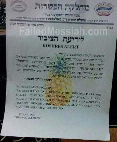 Monsey Rabbis Warning Bugs Pineapples 2-2014