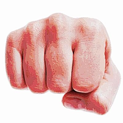 Fist 2