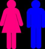 Female Male Gender Symbol