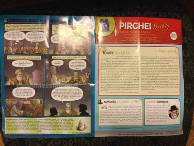 Pirchei Agudath Israel of America cartoon kids woman's face censored 11-2015