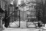 Auschwitz Sign 2