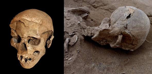 Skeletal remains of a group of foragers massacred around 10,000 years ago on the shores of a lagoon (University of Cambridge)