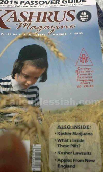 Kashrus Magazine Pesach 2015 Kosher Marijuana