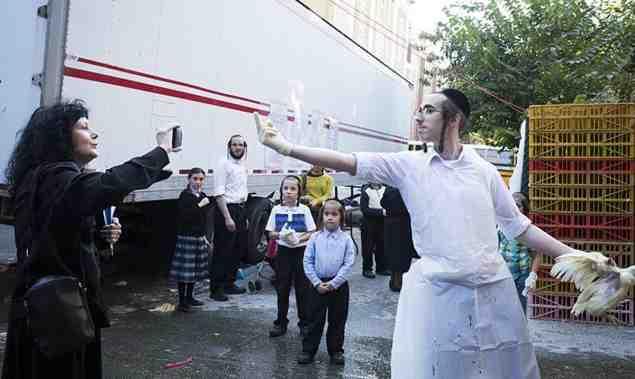 Hasid gives Rina Deych the finger Kapparos 9-17-2015 Borough Park
