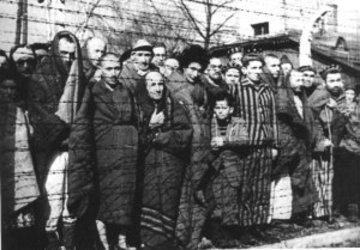 Auschwitzprisoners